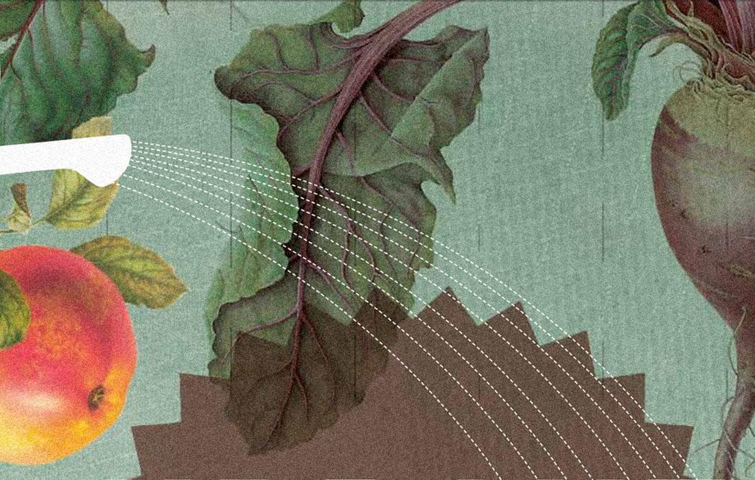 Urbanes Gärtnern-Cover